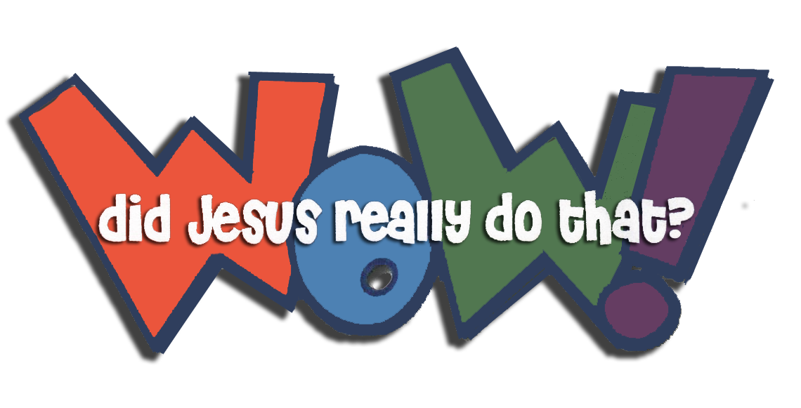 Wow! Did Jesus Really Do That? Logo